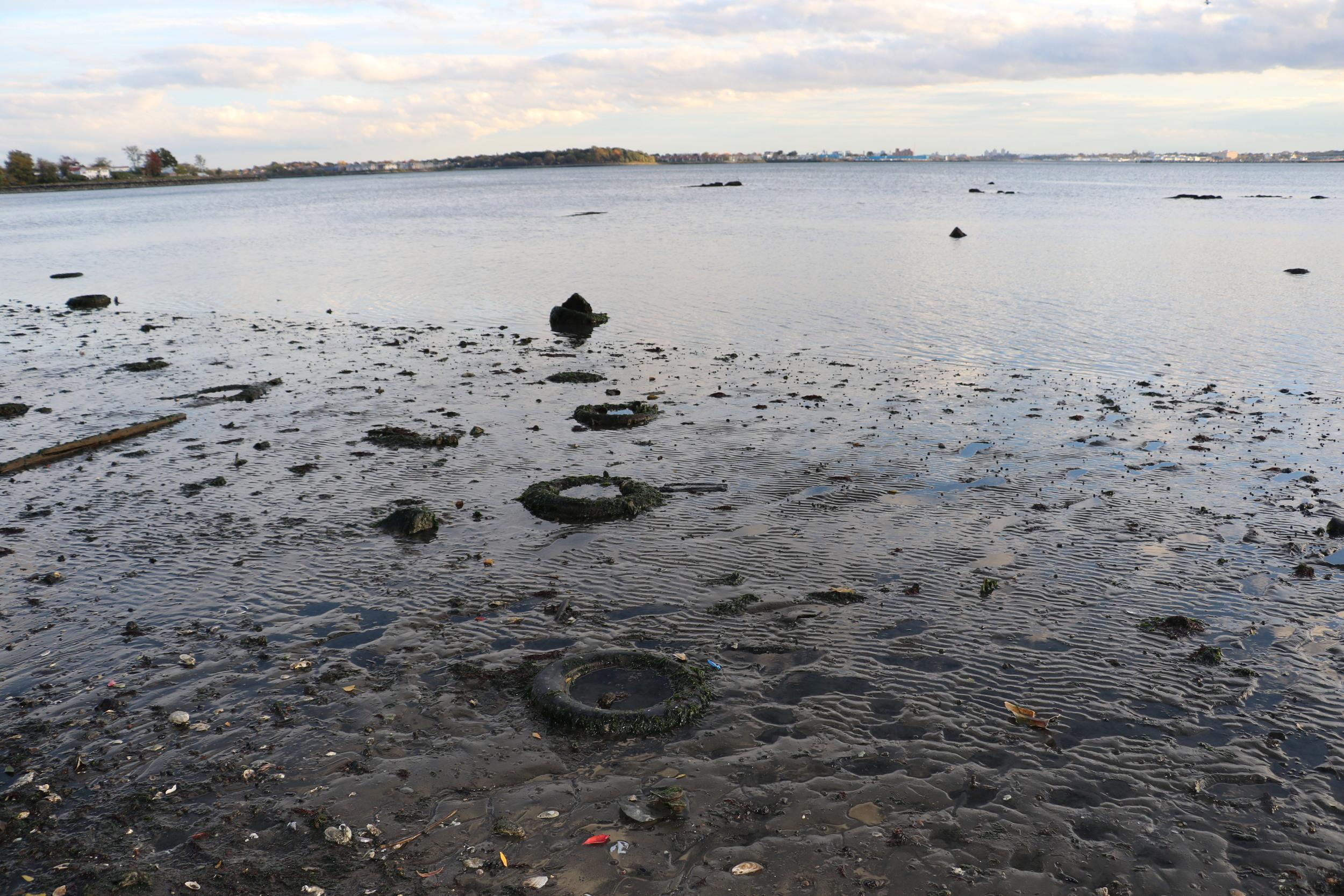 Tires at Low Tide, Photo Credit: Liz Summit, 2015