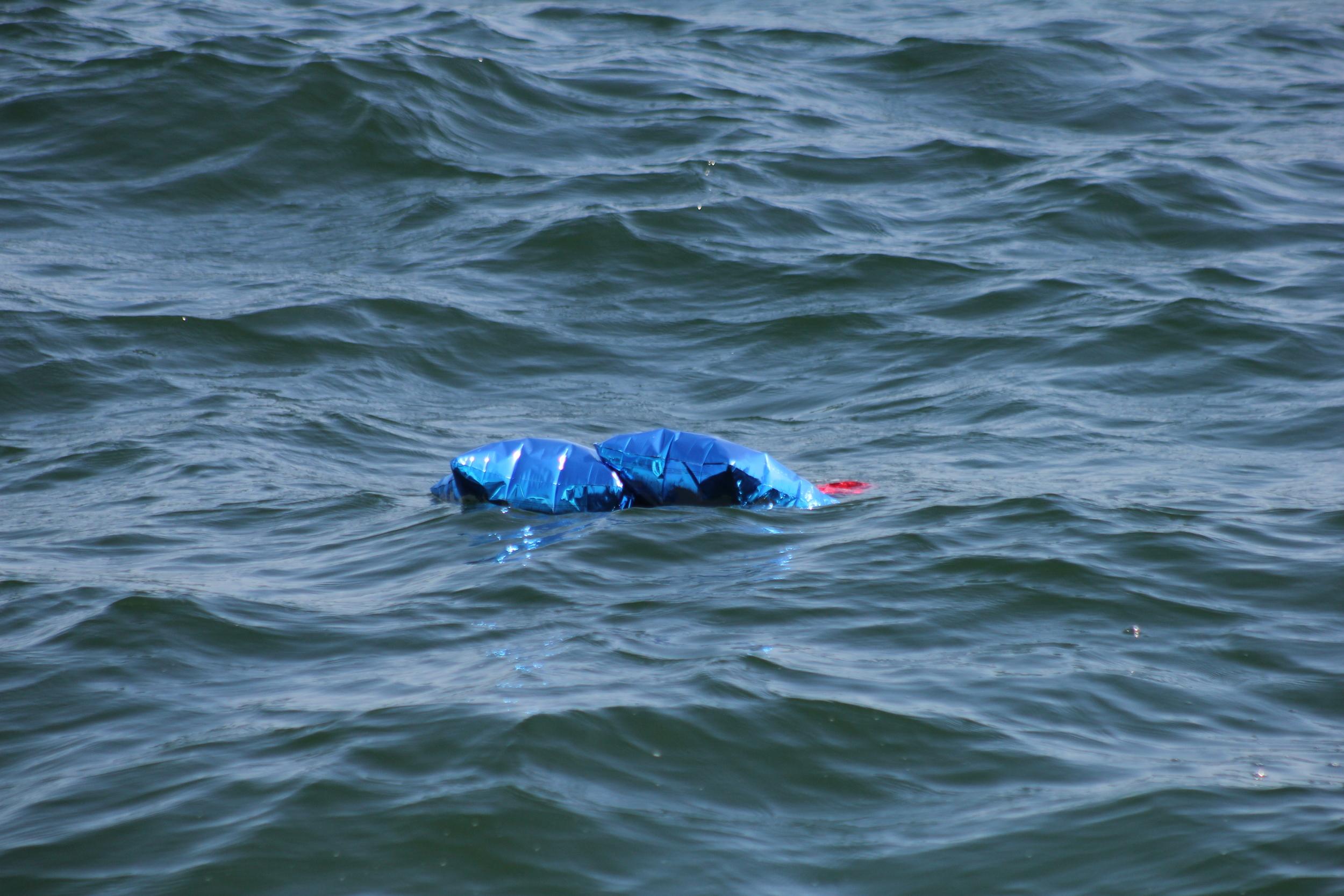 Floating Balloons, Photo Credit: Liz Summit, 2015