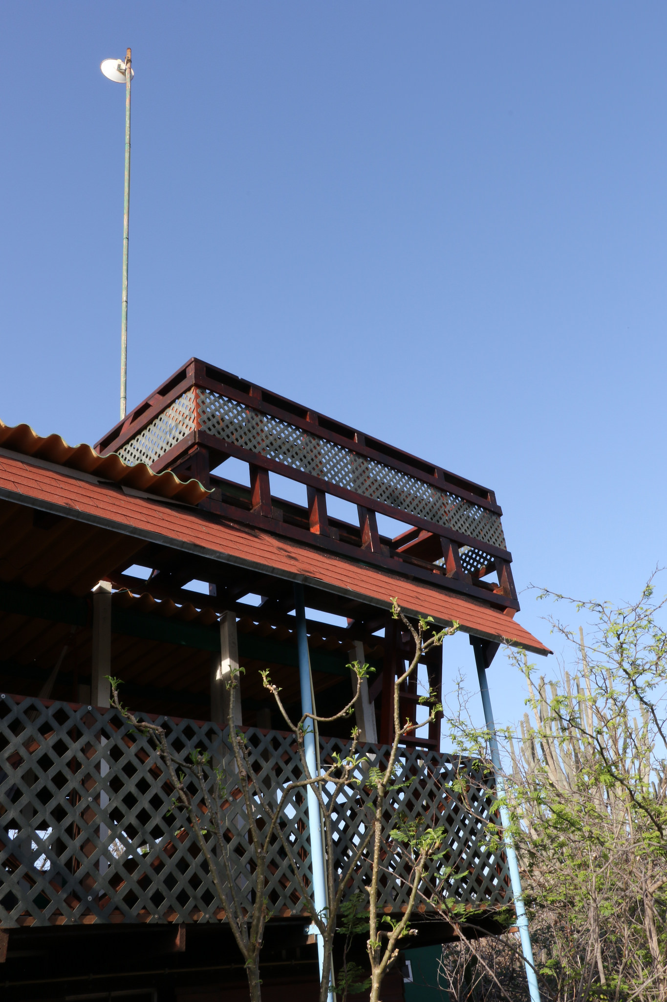 A View of the Ecolodge