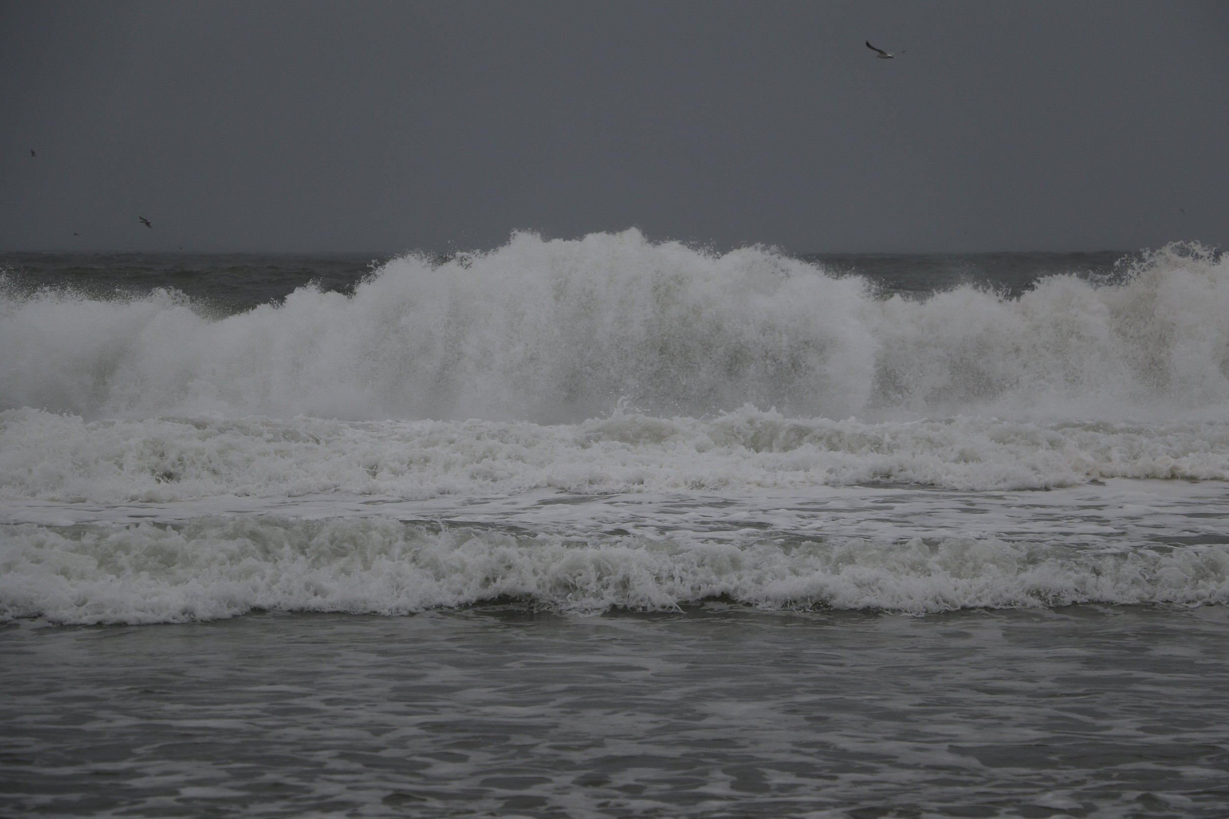 Hello, Ocean!
