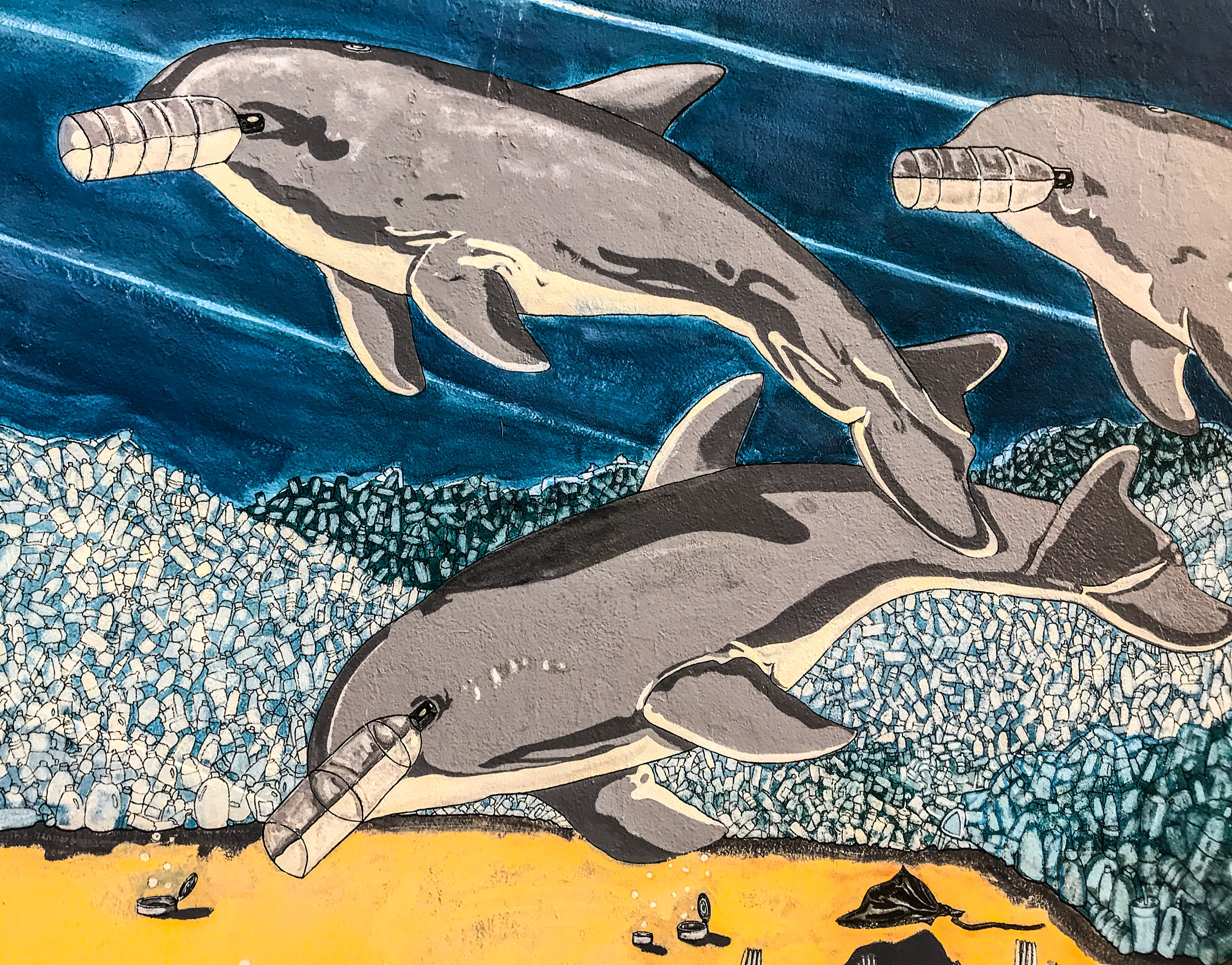 Inset from Tom Manco's mural at the New York Aquarium. Photo Credit: Liz Summit, 2017
