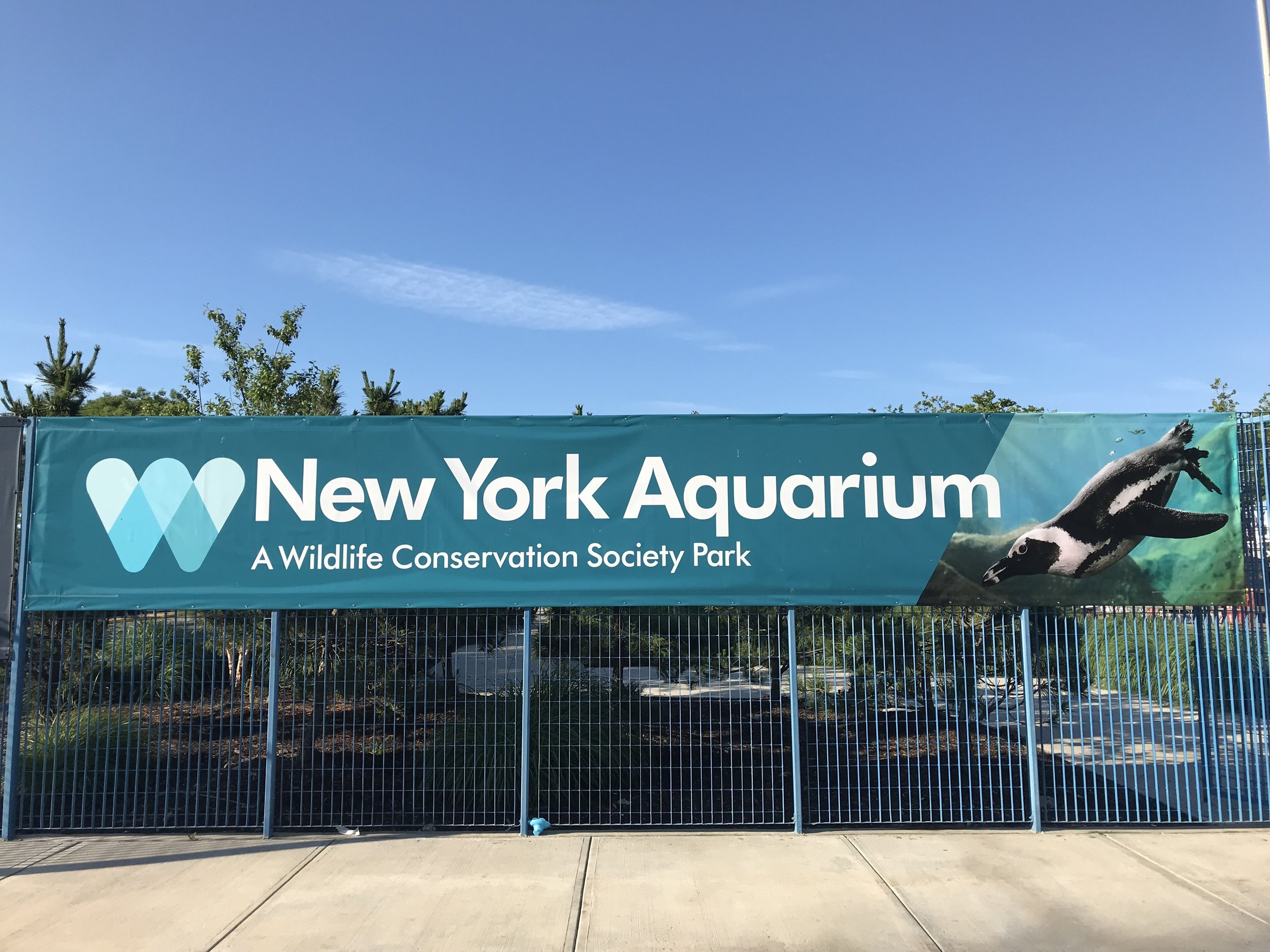 Welcome to the New York Aquarium