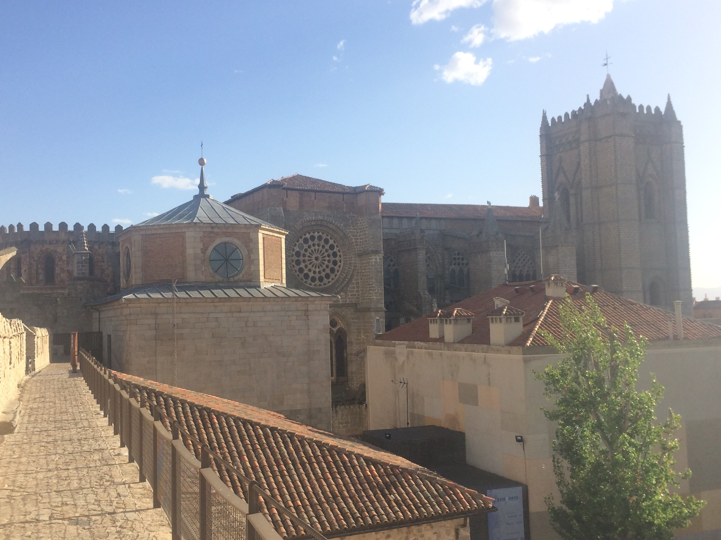 The view from the wall in Avila.