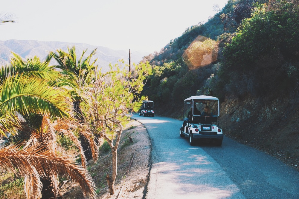 A caravan of carts travel the narrow road up to Avalon's infamous lookout point.