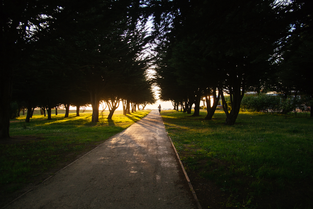A runner, at dusk, in the Presidio