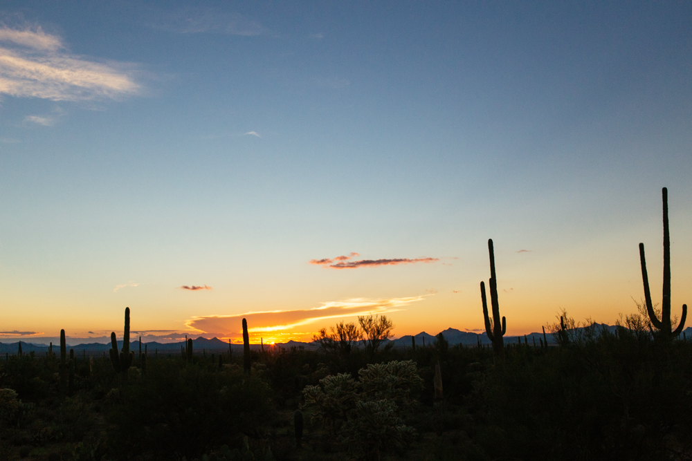 The Arizona sunsets are just incredible.