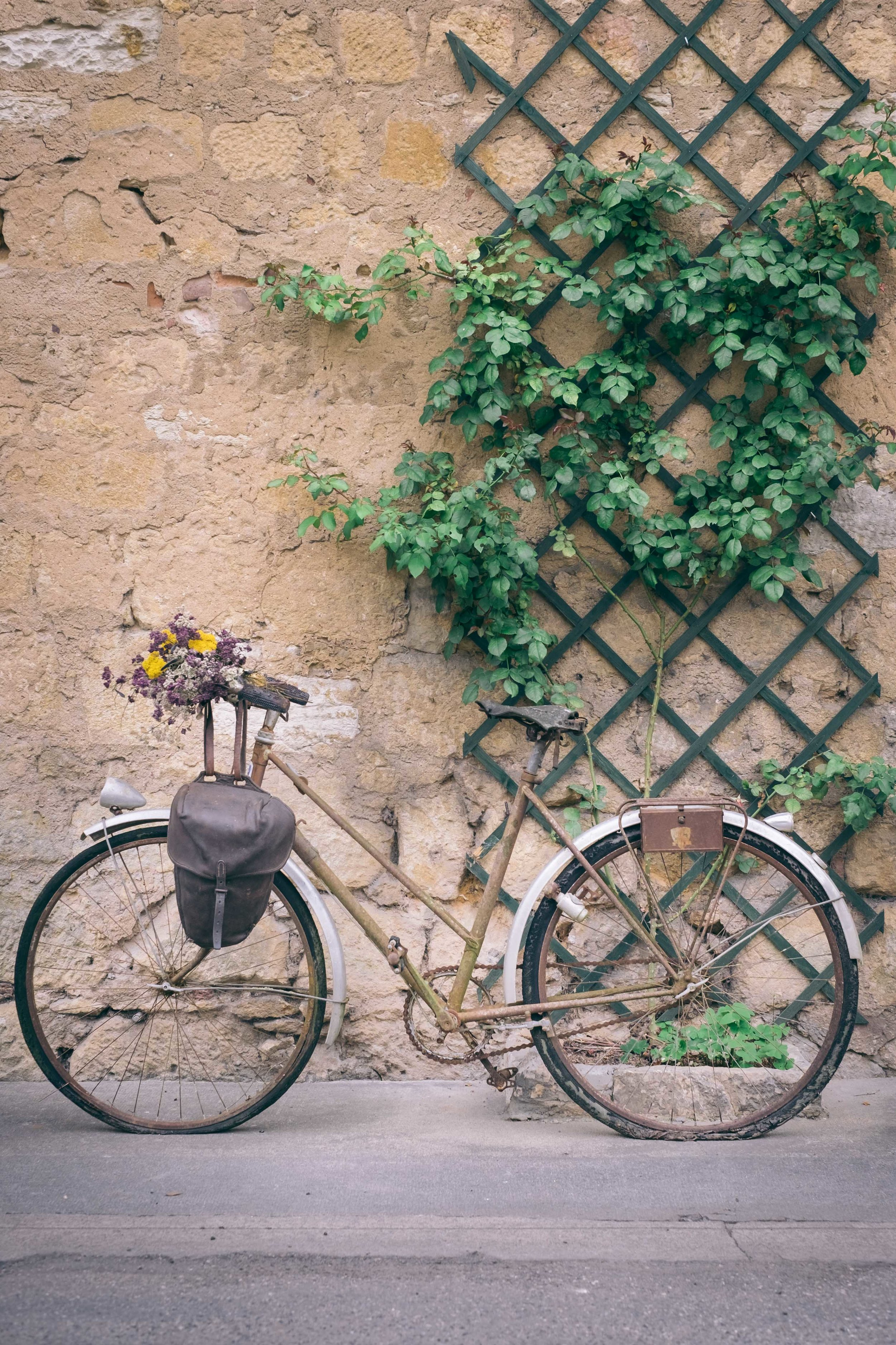 street bicycle, france