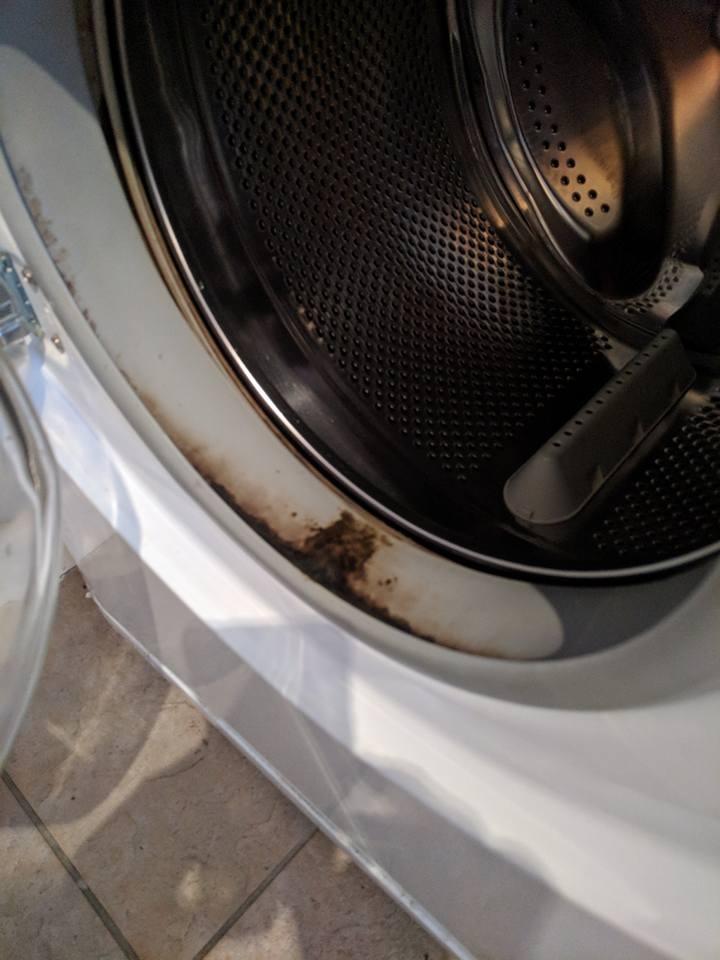 Mouldy Washing Machine Rubber