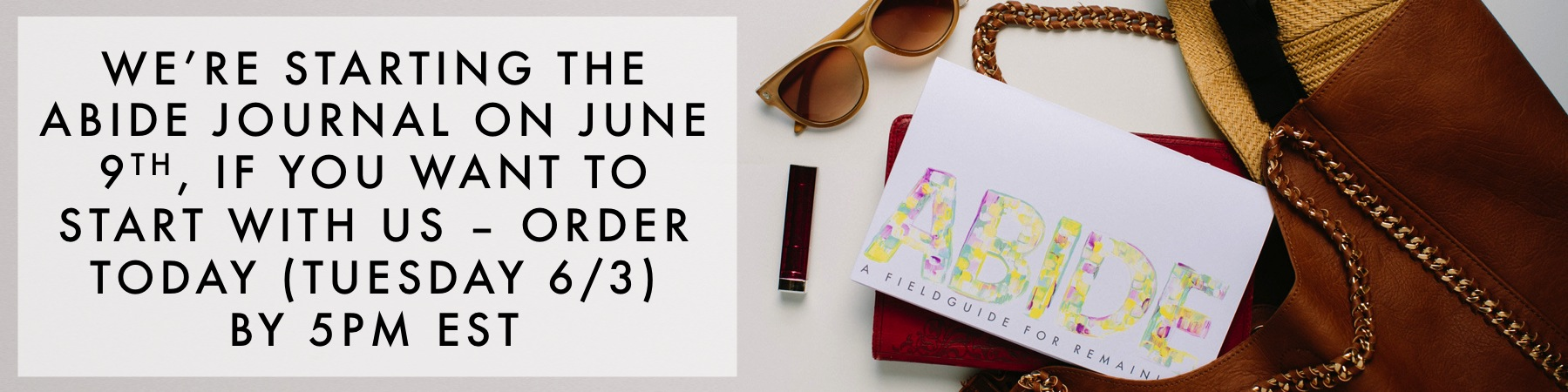 Our  Abide journal  is totally undated and you can do it any time, but if you'd like to start when we start (next Monday - June 9th, make sure you order today by 5pm EST)