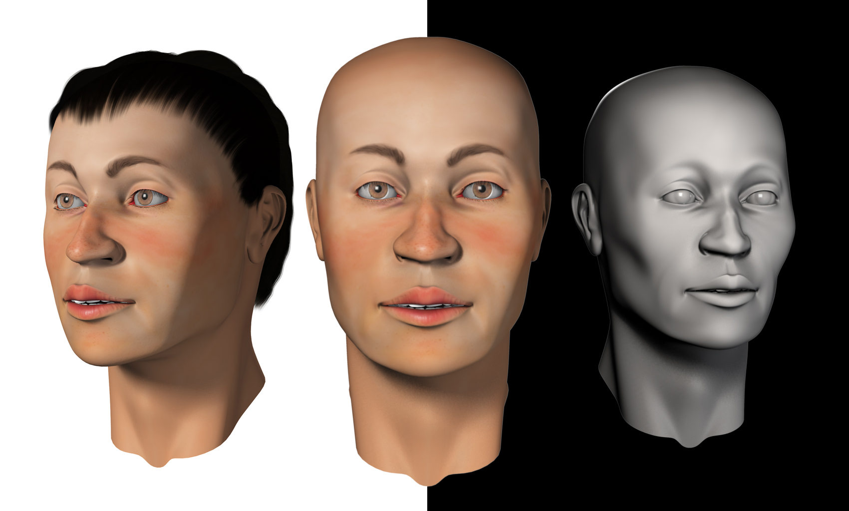 Forensic Facial Approximation