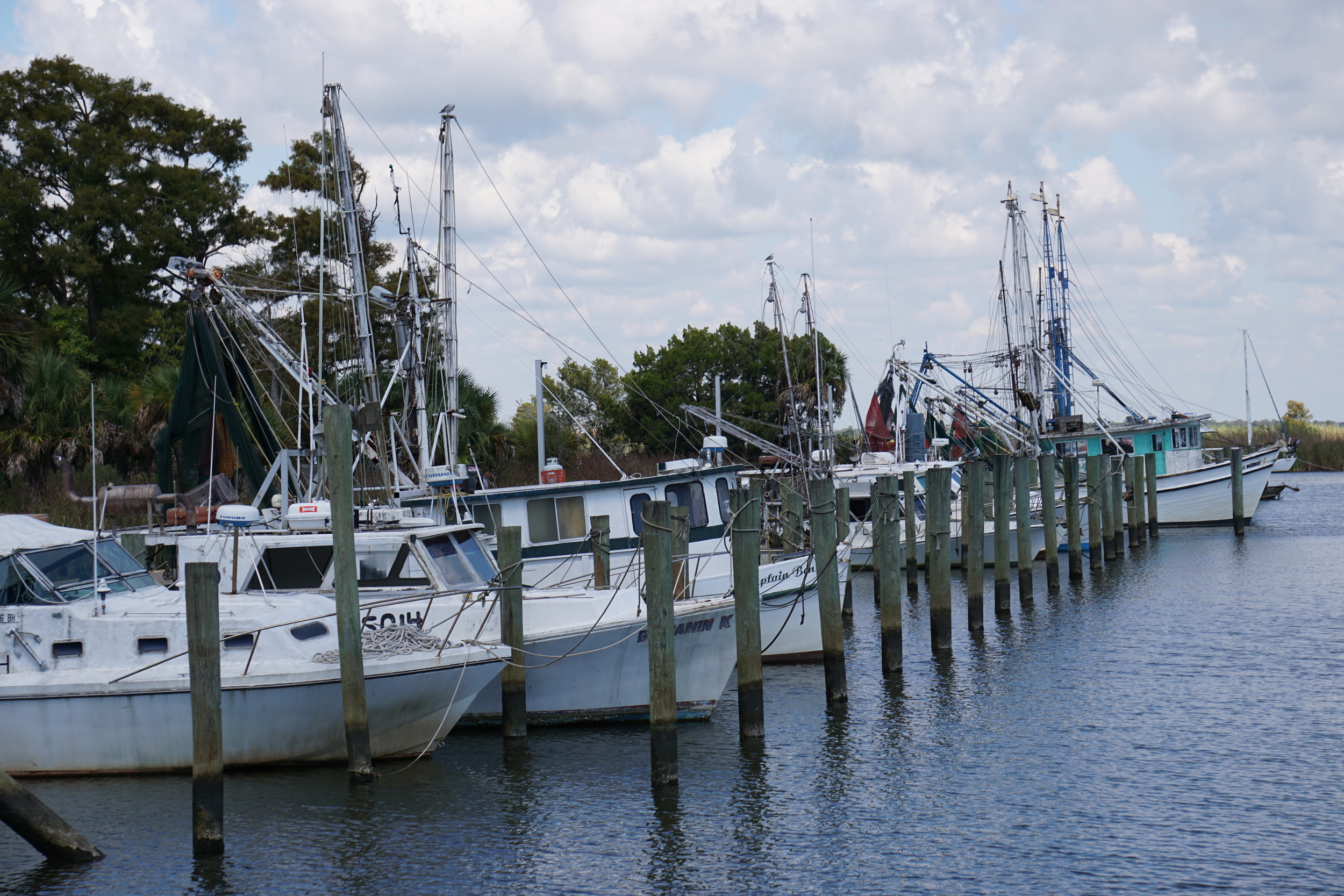 Seafood workers' boats along Apalachicola Bay. Photo by Daniel Ward