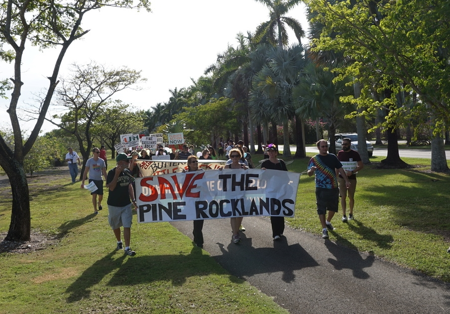 Protestors at Rally for the Rocklands head from Zoo Miami to the proposed shopping center site. Photo by Daniel Ward.