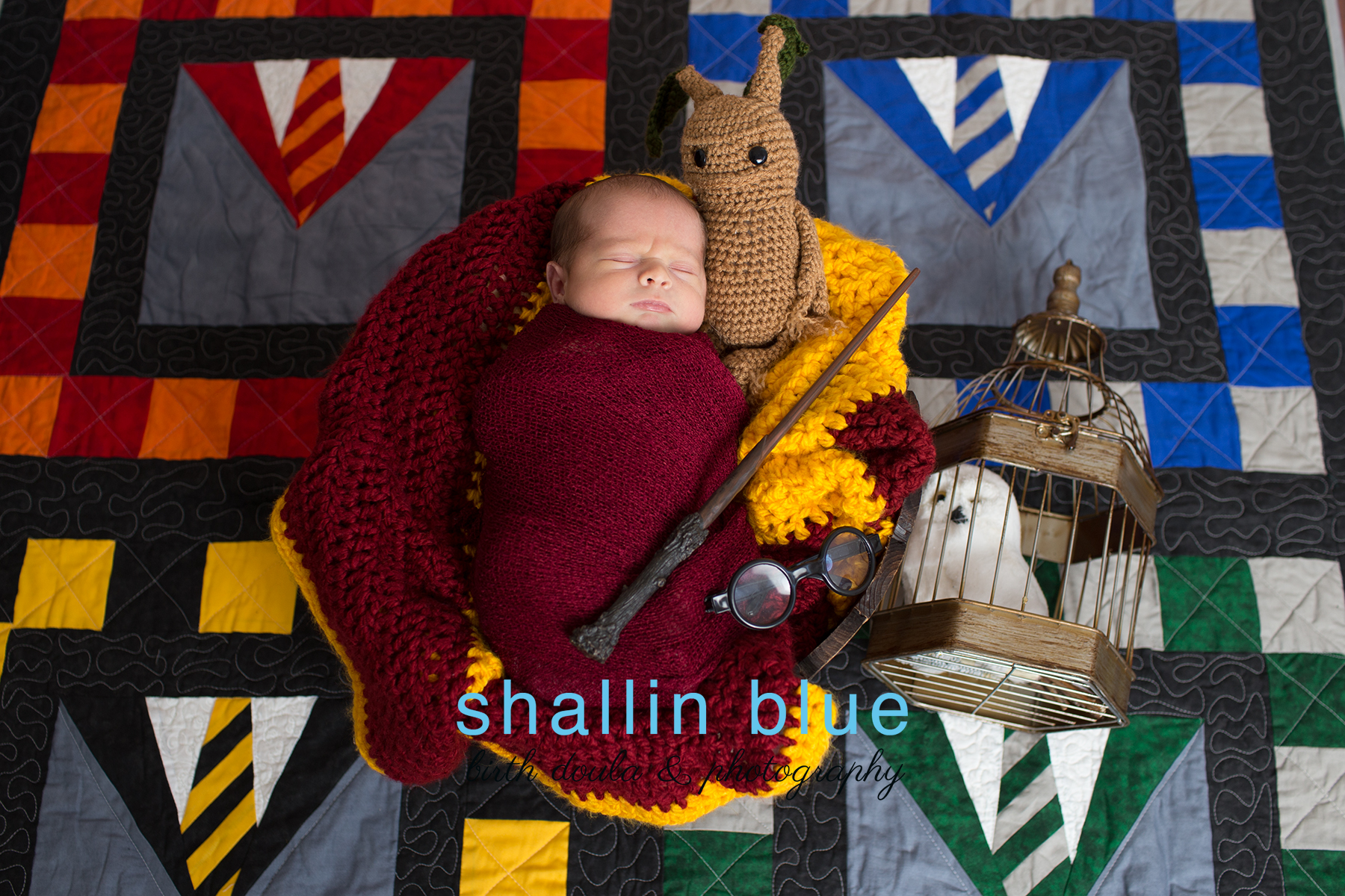 harrypotternewbornhawaii.jpg