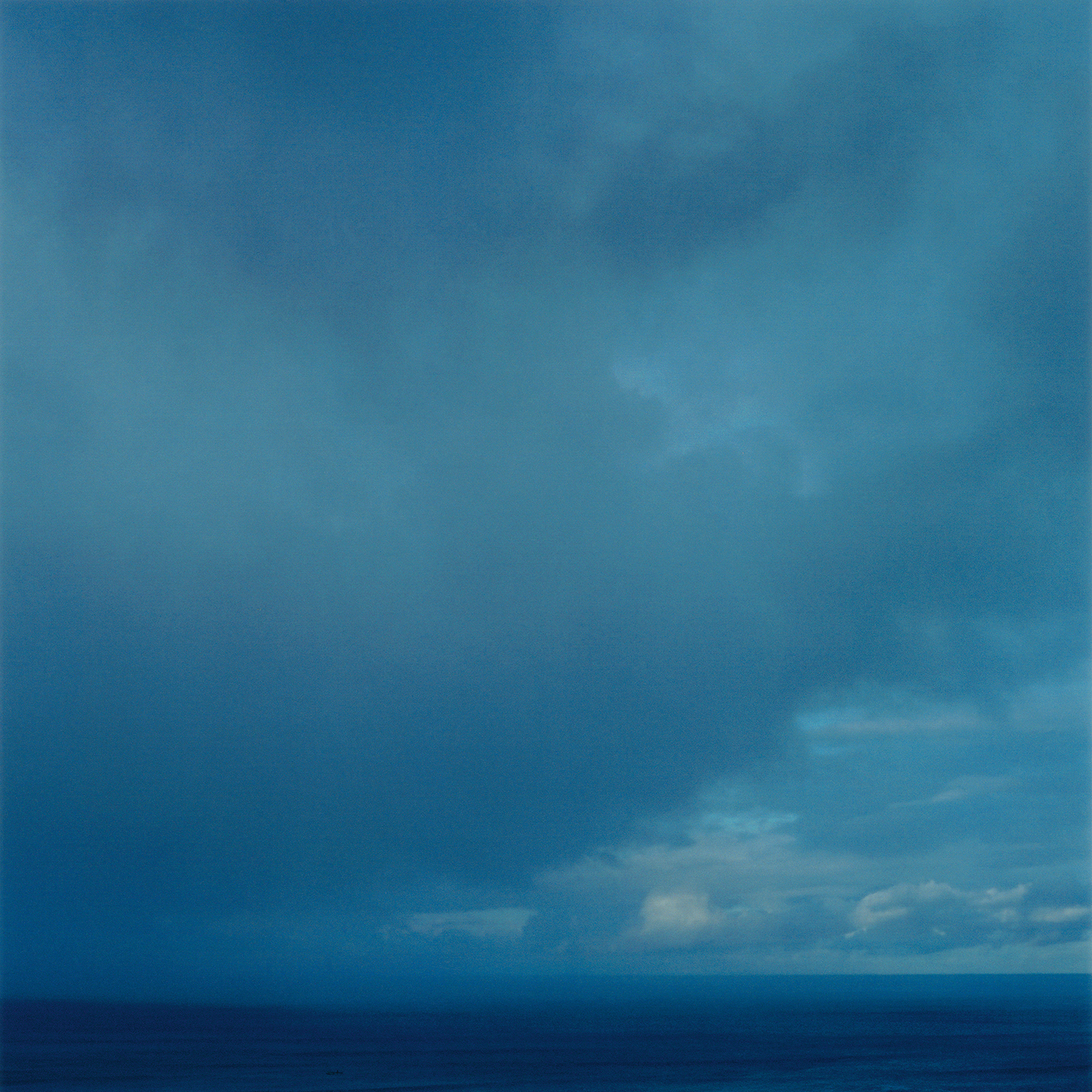 SQUALL, 2005