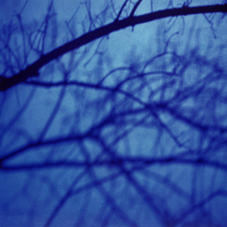 The Blue House - (Frida) 1987