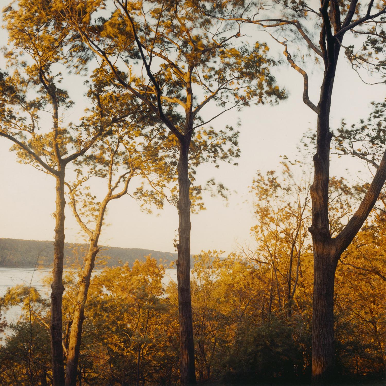 Hudson River at Cloisters