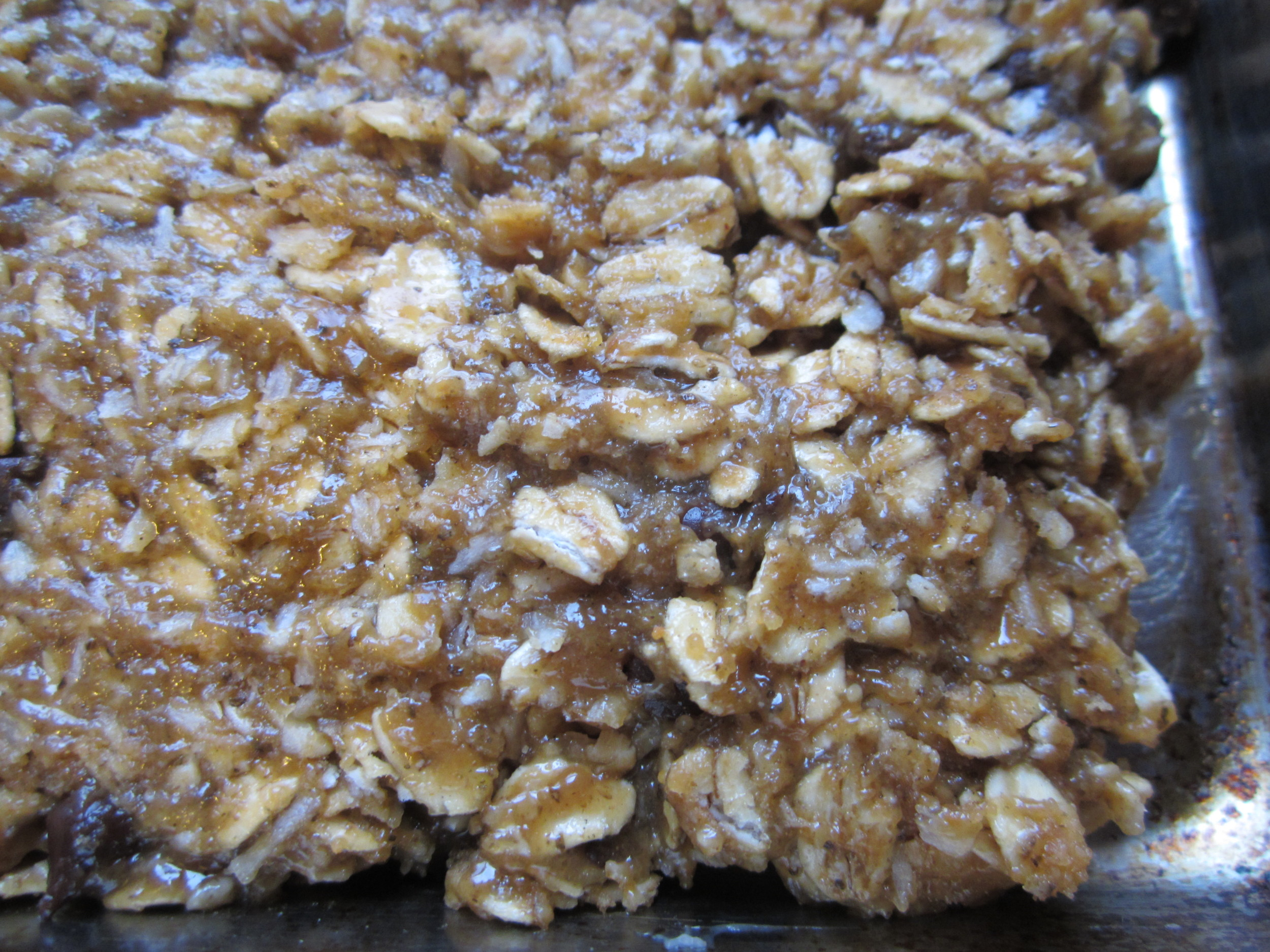 Missing your nutrition bars on low FODMAP diet?  Try these .