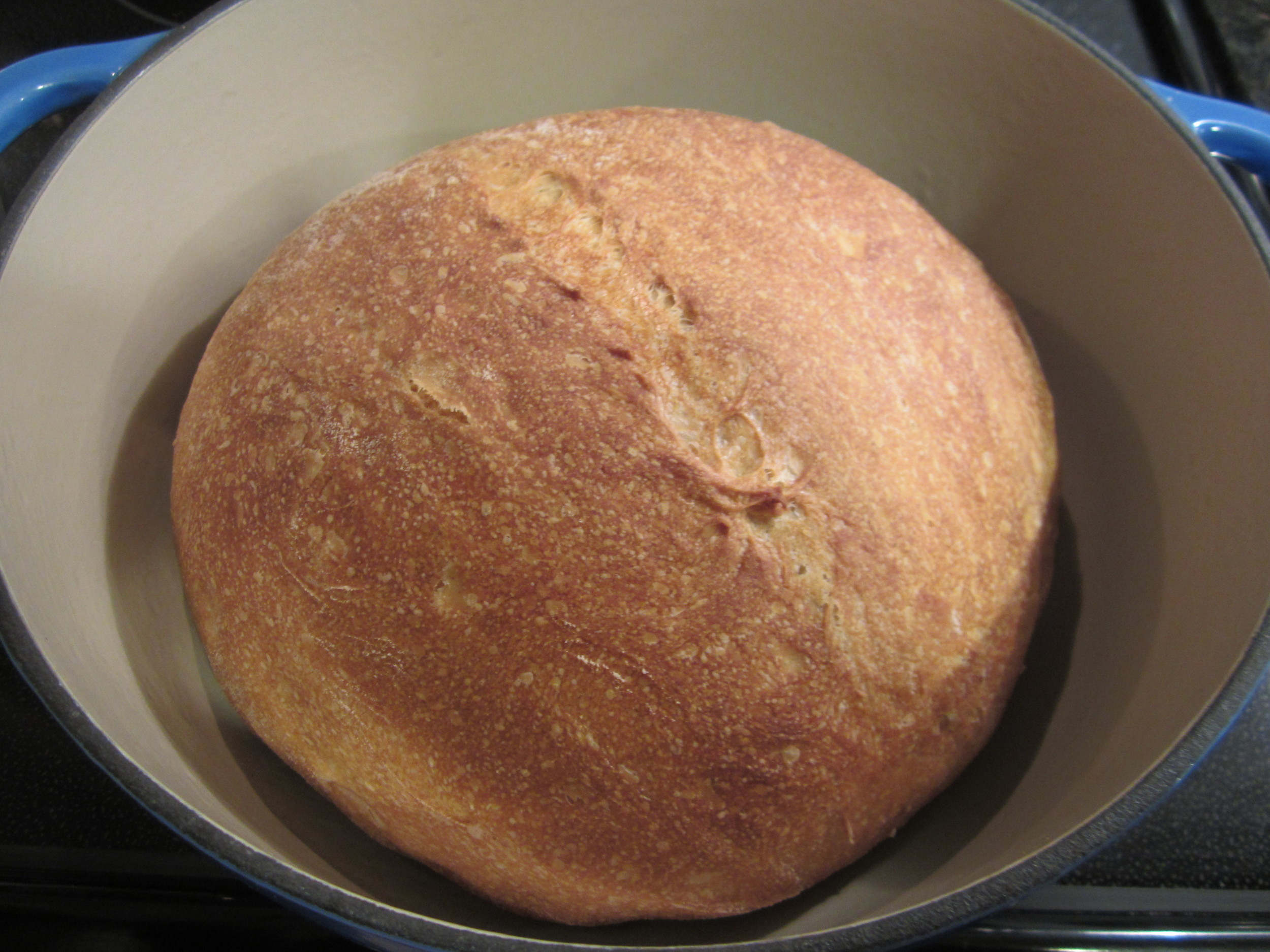 My first loaf of homemade sourdough bread. Will sourdough bread prove to be low in FODMAPs?