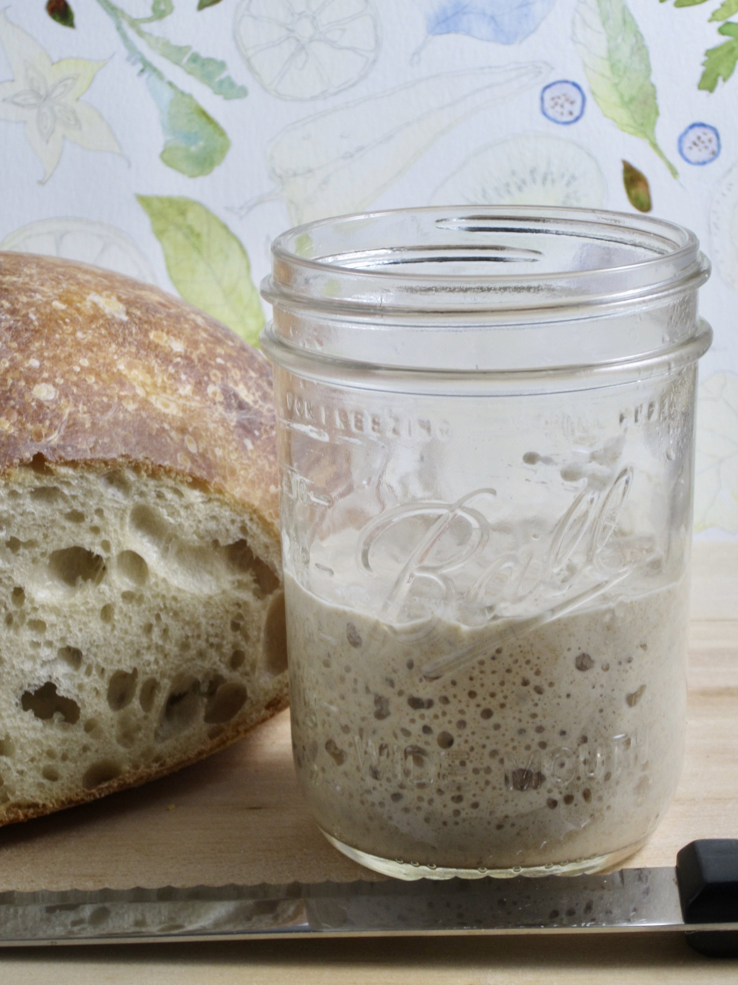 My own recent attempts at making sourdough bread at home involves a small amount of rye flour. Rye flour contains lots of the wild yeasts and lactic acid forming bacteria needed to establish a vigorous sourdough starter.