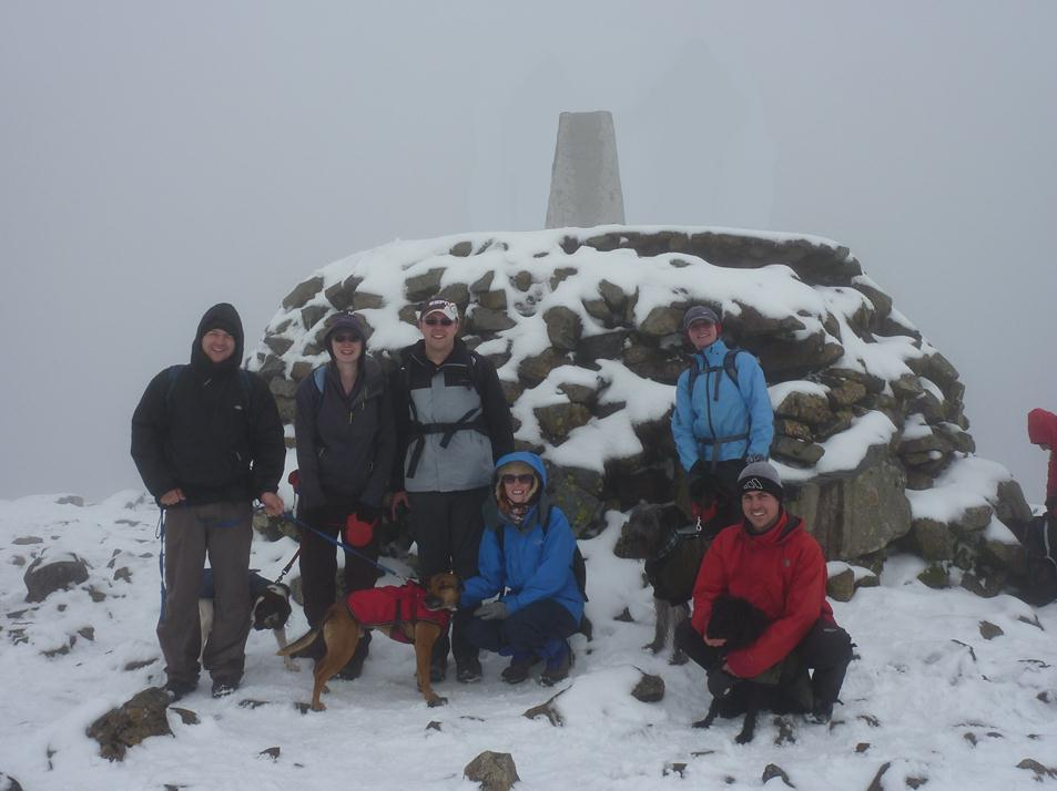 The Writing Man, his friends and their dogs reach the summit of Ben Nevis