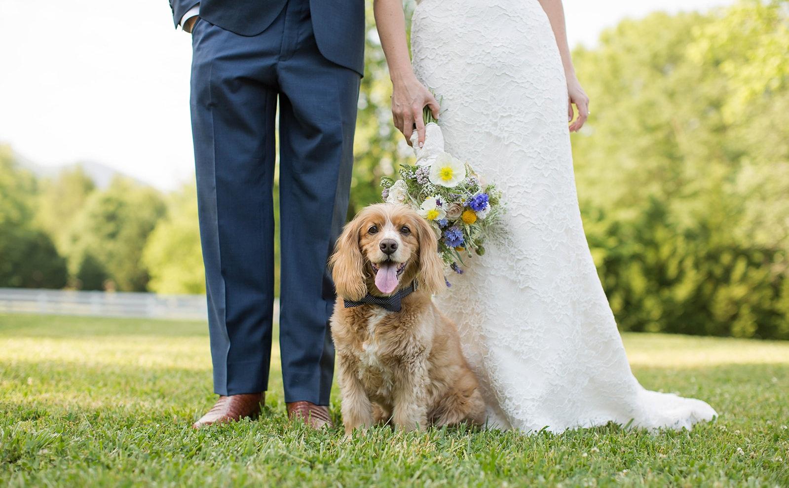 Wedding Photo Gallery