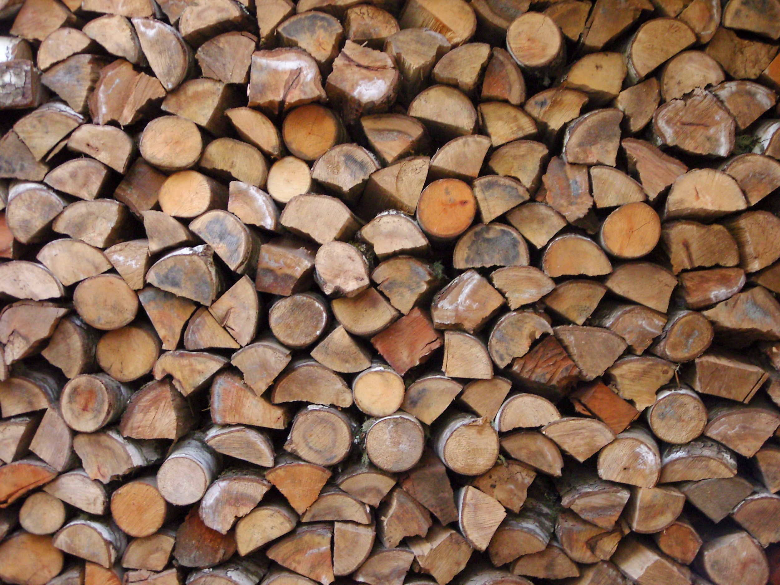 woodpile.jpg