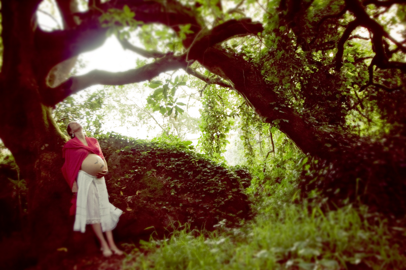 Maternity Photography_ bay area woodsy - 2