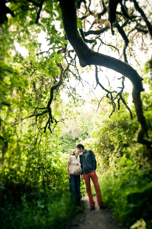 Maternity Photography_ bay area forest - 1