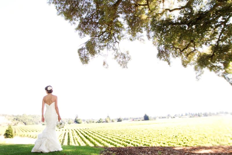 Healdsburg Country Gardens wedding 1