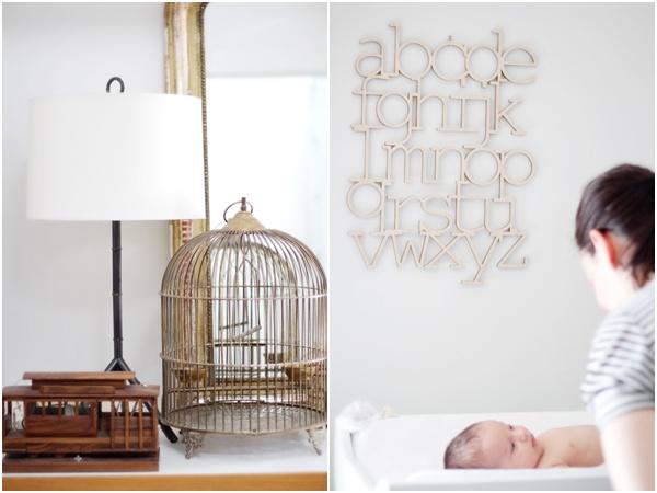 Newborn family portraits Julie Mikos 5