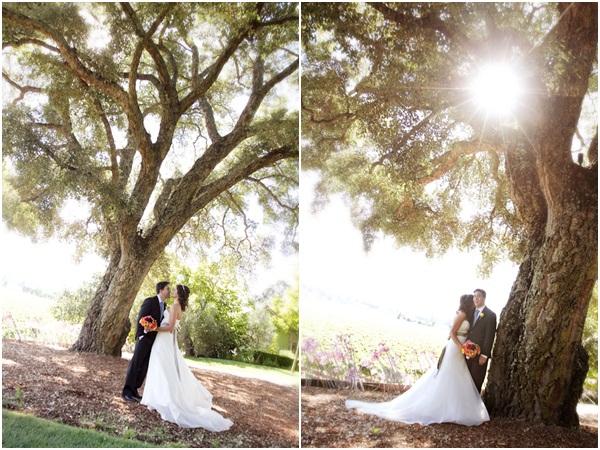 Healdsburg Country Gardens wedding 10