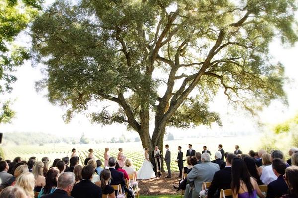Healdsburg Country Gardens wedding 12