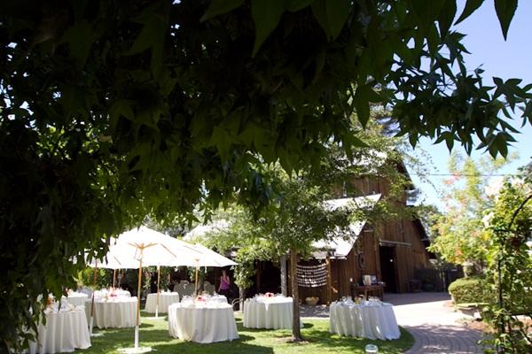 Healdsburg Country Gardens wedding 13