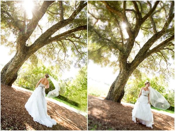 Healdsburg Country Gardens wedding 17