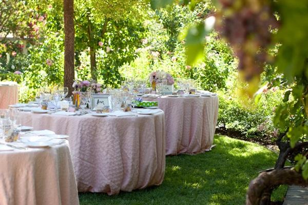 Healdsburg Country Gardens wedding 23