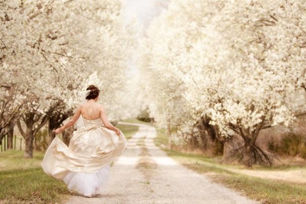 kansas wedding 3