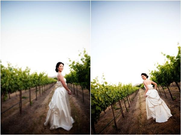vineyard wedding 2