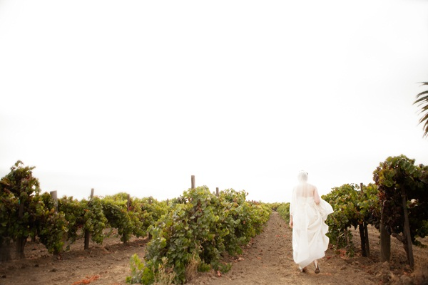 Napa Valley Wedding by Julie Mikos 13