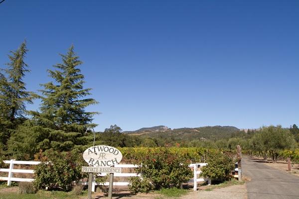 Atwood Ranch Wedding 2.5