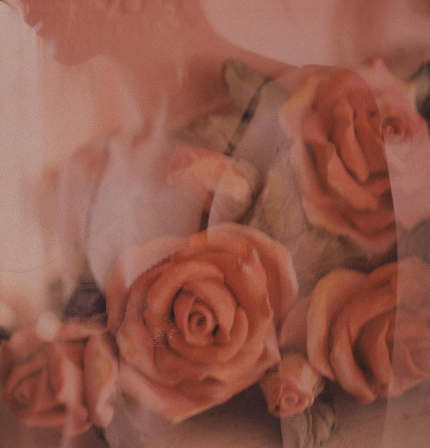 Polaroids x Asher Moss-2.jpg