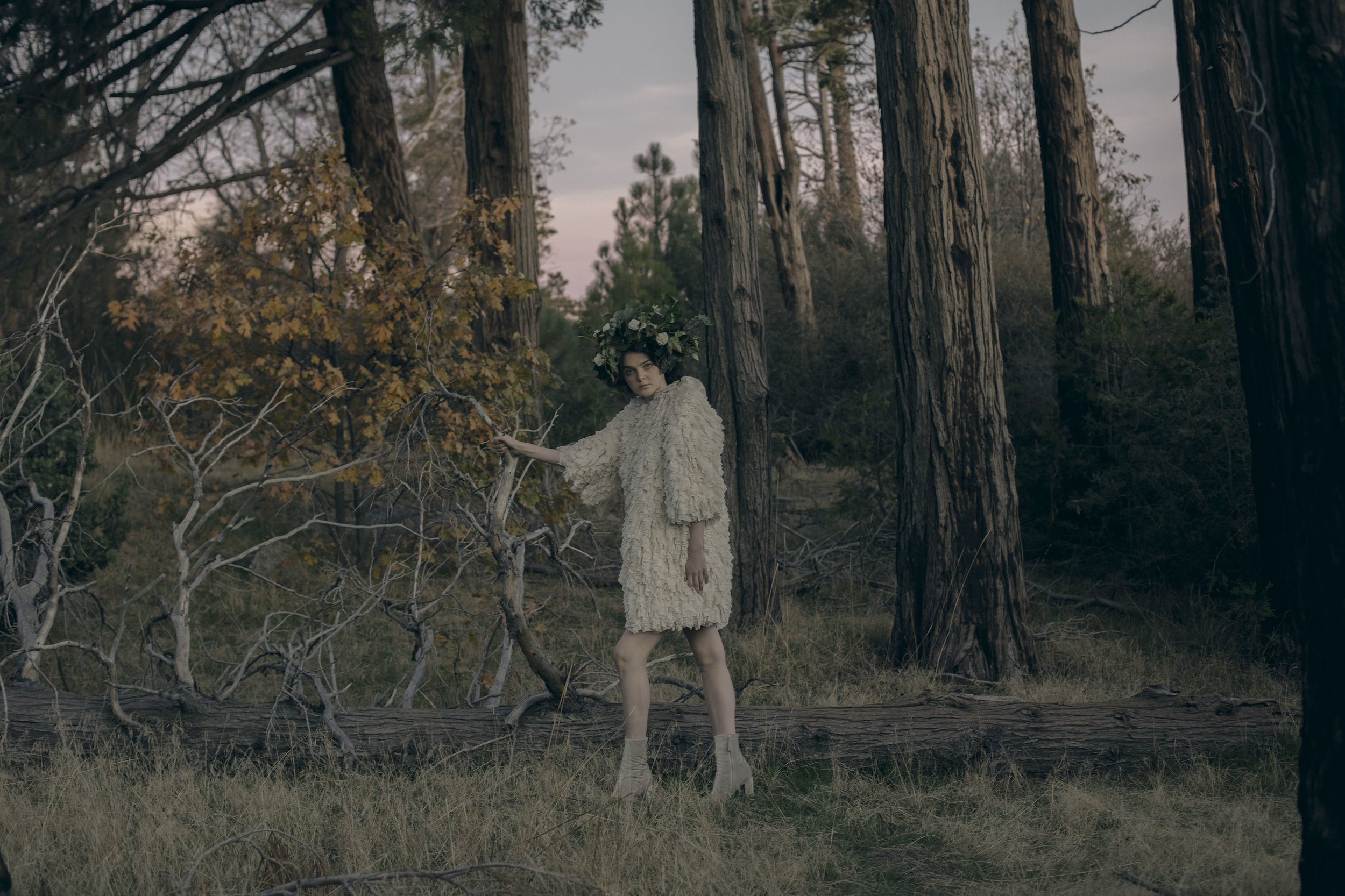Wild Nymph -