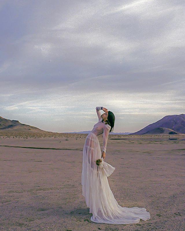 The Bride, 2017