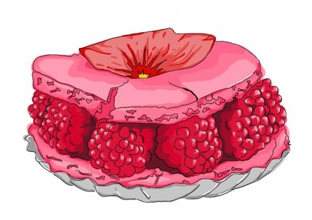 Macaron Illustration Rasberry