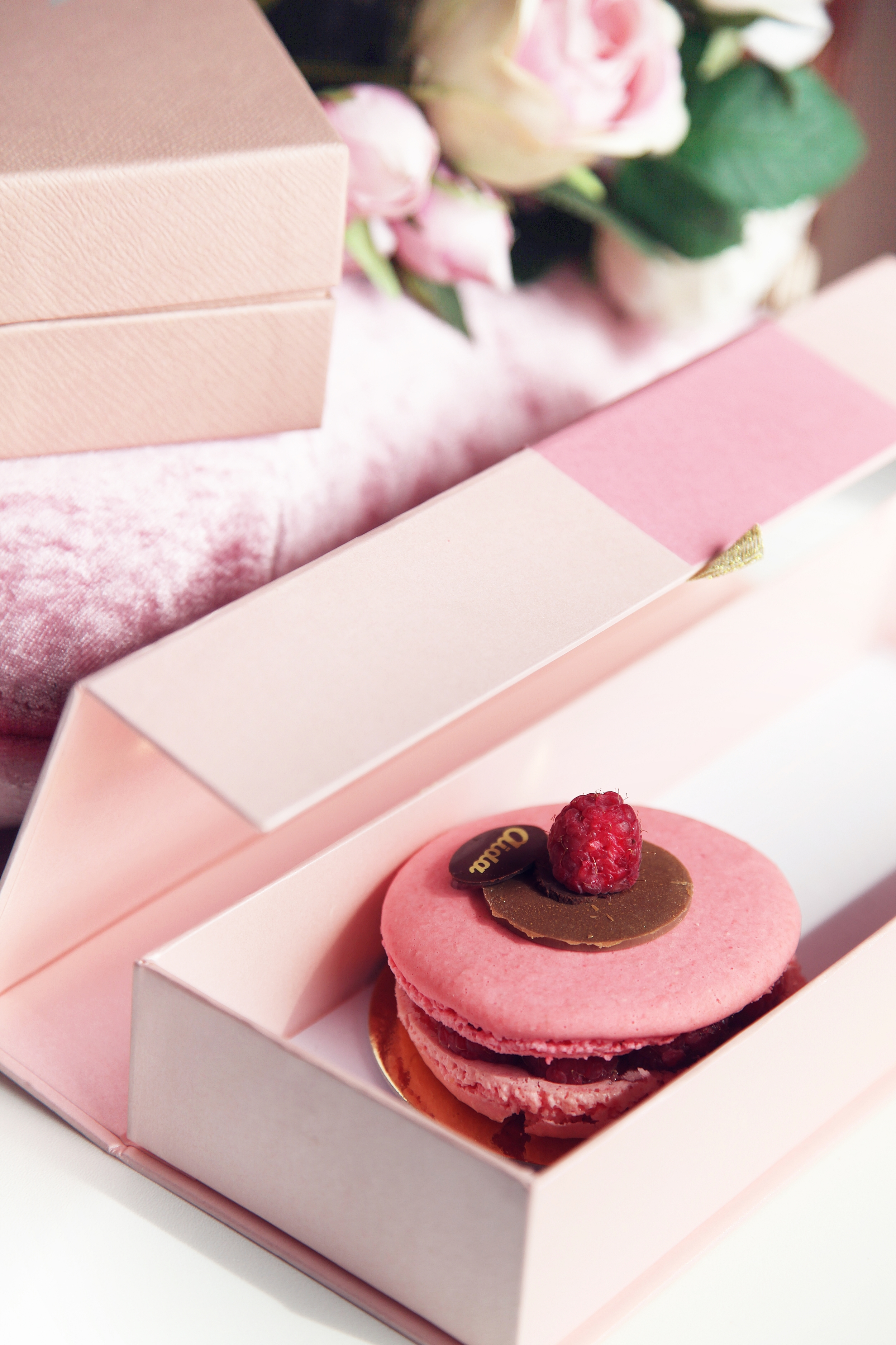 Supersized Pink Rasberry Macaron - Dyrogue