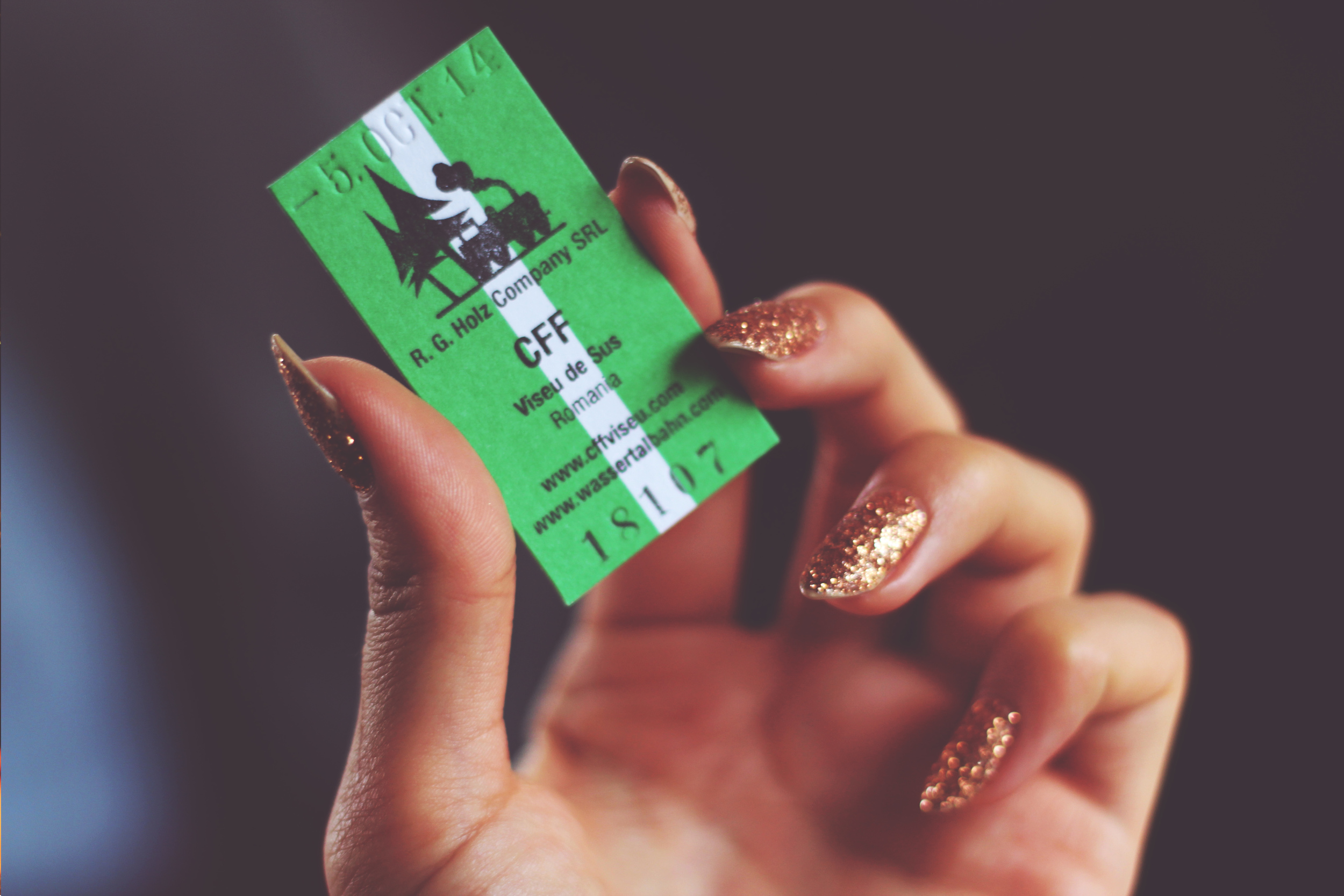 Mocanita Ticket Maramures