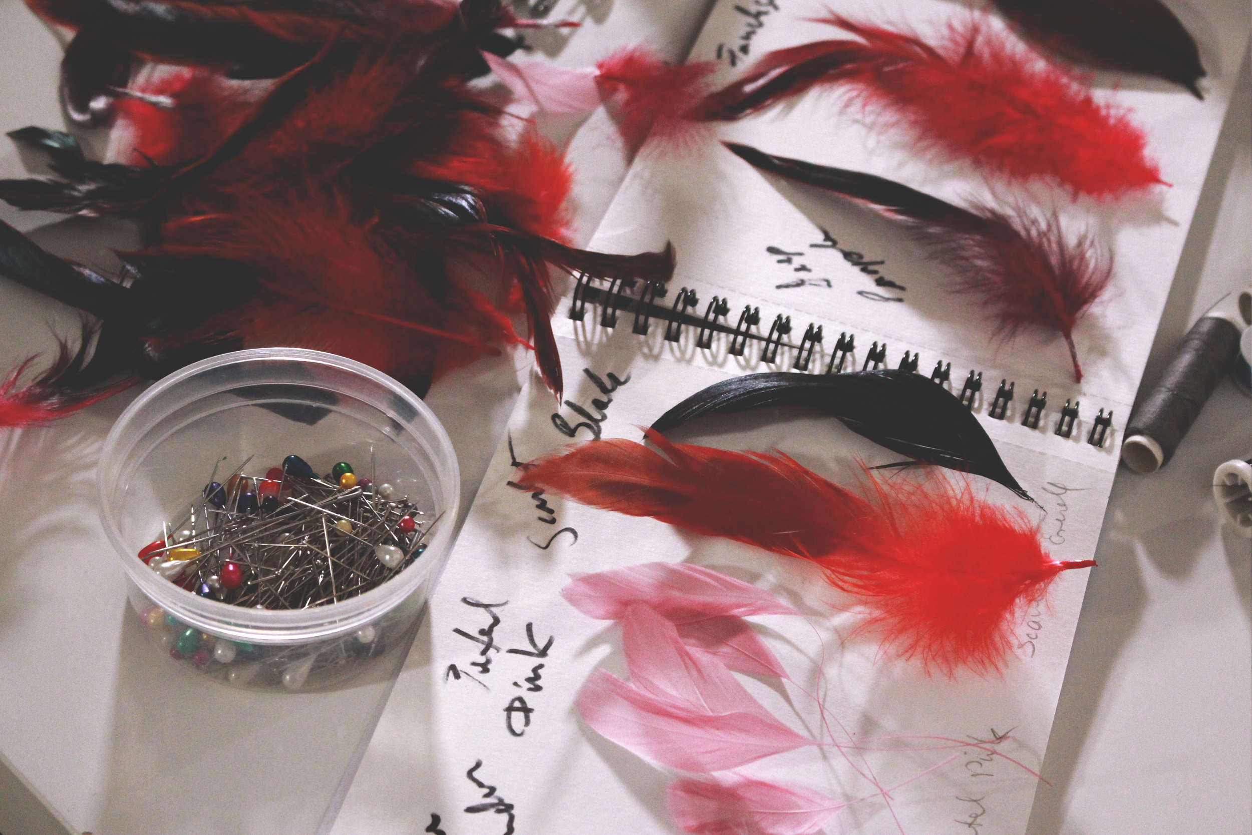Diana Rogo Feather Manifesto 6.jpg