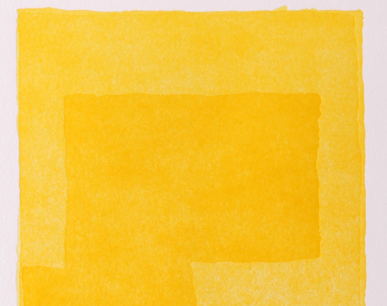 sharp yellow detail.jpg