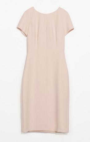 Zara Shift Dress $79.90