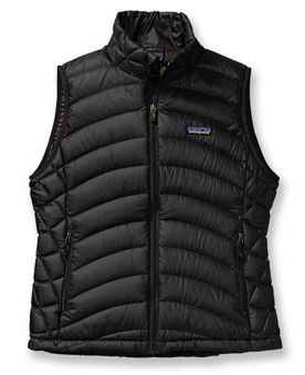 Patagonia Down Sweater Vest $169