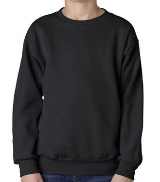 Hanes sweatshirt $4.66 - $22.83